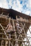 De mensen van de Korowaistam bij een ladder aan het Traditionele Koroway-huis streken in een boom boven de grond neer, Stock Foto