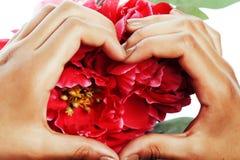 De mensen van de manicurepedicure overhandigen concept, namen de vrouwenvingers in roze vorm die van hart bloemen houden toe Stock Fotografie