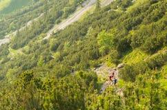 De mensen van de Trailrunningsgroep in de bergen van Allgau, Duitsland Royalty-vrije Stock Afbeeldingen