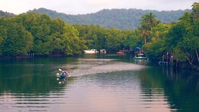 De mensen van de silhouetreis onderzoeken de wildernis van het mangroveregenwoud door kajak op de rivier op het landschap van de  stock videobeelden