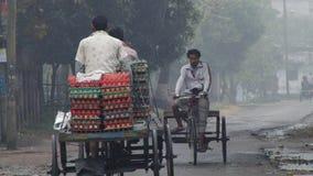 De mensen vervoeren eieren door fietsen op een koude mistige ochtend in Puthia, Bangladesh stock videobeelden