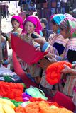 De Mensen Vietnam van de Minderheid van Hmong van de bloem Stock Foto's