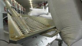 De mensenarbeider neemt zak met korrel en giet het neer aan malenmachine in langzame motie stock footage