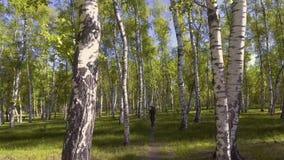 De mensenfietser berijdt boswegen stock footage