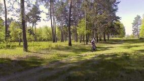 De mensenfietser berijdt boswegen stock videobeelden