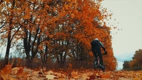 De mensenfietser berijdt boswegen stock video