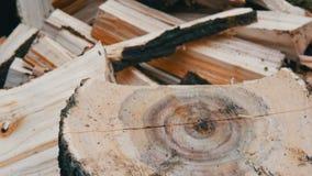 De mensenhouthakker hakt boomboomstammen met een bijl voor brandhout dichte omhooggaande mening stock footage