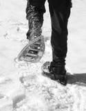 De mensenlooppas met sneeuwschoenen in bergen voert zwart-wit uit Royalty-vrije Stock Fotografie