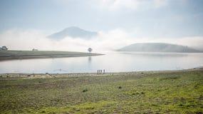 De mensentribune door meer anh alleen boom op het meer, zonsopgang bij mistige mountai, wolk op de hemel Royalty-vrije Stock Fotografie