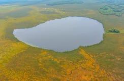 De meren en de moerassen van Westelijk Siberië Stock Foto's