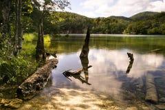 De meren Kroatië van Plitvice Stock Foto