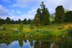 De meren van Ayryk in bergen Altai Stock Foto