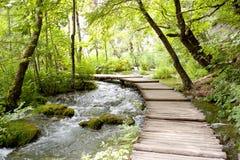 De meren van Plitvice - houten weg. Stock Foto