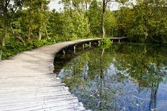 De meren van Plitvice in Kroatië Stock Fotografie