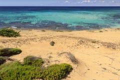 De mest härliga stränderna av Italien: Den Campomarino dyn parkerar royaltyfri foto