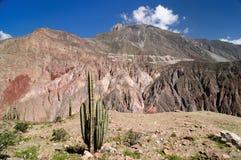 De mest intressanta ställena av Sydamerika, kanjon Cotahuasi Royaltyfri Fotografi