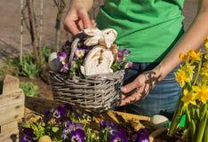 De met de hand gemaakte decoratie van Pasen met de lentebloemen en konijntje thuis Stock Afbeeldingen