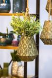 De metaalpot van de brons hangende bloem met decoratieve bloem Het hangen van mooie bloempot met groene installatie stock afbeelding