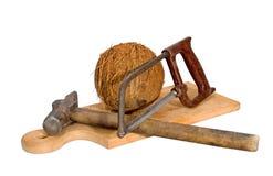 De metaalzaaghamer van de kokosnoot Stock Fotografie