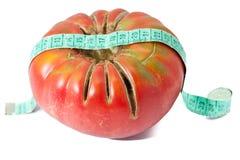 De meting van de tomaat Stock Foto's