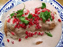 De Mexicaanse Specialiteit van het Voedsel Stock Afbeeldingen