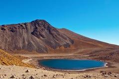 de mexico nära den gammala tolucavulkan för nevado Royaltyfri Fotografi