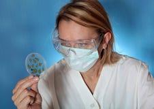 De microbiologie Stock Afbeelding
