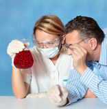 De microbiologie Stock Foto's
