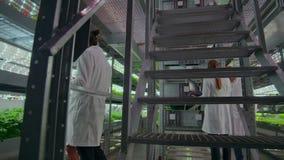De microbiologie in wit bedekt het lopen op een modern landbouwbedrijf met laptops en tabletten met een laag die en de resultaten stock video