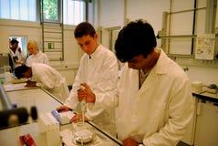 De microbiologielaboratorium Royalty-vrije Stock Foto