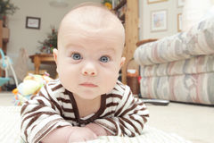 De Mijlpalen van de baby: Het kruipen Stock Foto