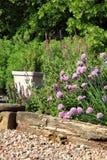 De milieuvriendelijke tuin van het land stock afbeelding