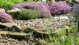 De milieuvriendelijke tuin van het land royalty-vrije stock fotografie