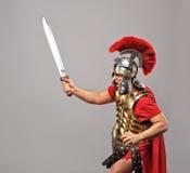 De militair van de legionair Stock Afbeeldingen