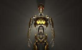 De militair van de robot Stock Afbeeldingen