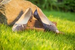 De militaire balletvlakten liggen op het gras in de tuin stock afbeeldingen