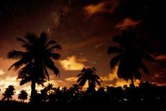 De Milky långt stjärnorna royaltyfri bild