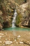 De minerale lente van Ein Gedi Stock Foto's