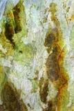 De minerale steen van de jade Royalty-vrije Stock Fotografie