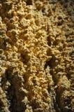 De Mineralen van het hol Stock Fotografie