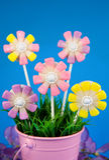 De cake van de bloem knalt stock foto's