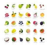 De miniaturen van de klemkunst van vruchten en bessen royalty-vrije illustratie