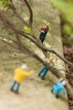 De miniatuurarbeiders die gevallen bomenbovenkant ontruimen bekijken Royalty-vrije Stock Foto