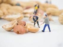 De miniatuuringenieur werkt aan noten royalty-vrije stock foto