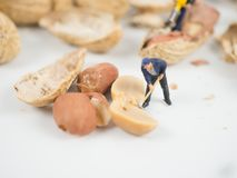De miniatuuringenieur werkt aan noten stock foto