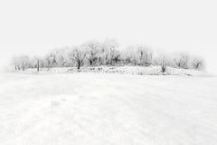 De minimale winter Royalty-vrije Stock Afbeeldingen