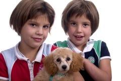 De Minnaars van het puppy Royalty-vrije Stock Foto