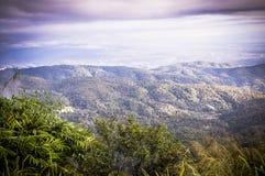 De mist in berg op Chiang Mai stock afbeelding