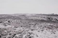 De mist die over dit landschap rollen maakt u niet zeker is in het strand of de woestijn stock afbeeldingen