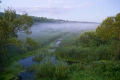 De mist komt op de kleine rivier Stock Afbeeldingen